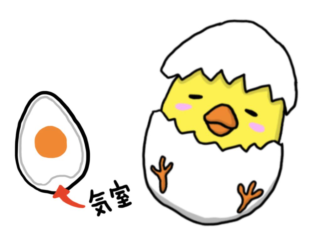 100均の卵穴あけ器でゆで卵の殻がツルんとむける。